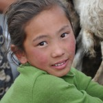 Pretty Mongolian girl milking goats