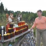 Roadside vendor selling honey - notice the stuffed squirels - Russia